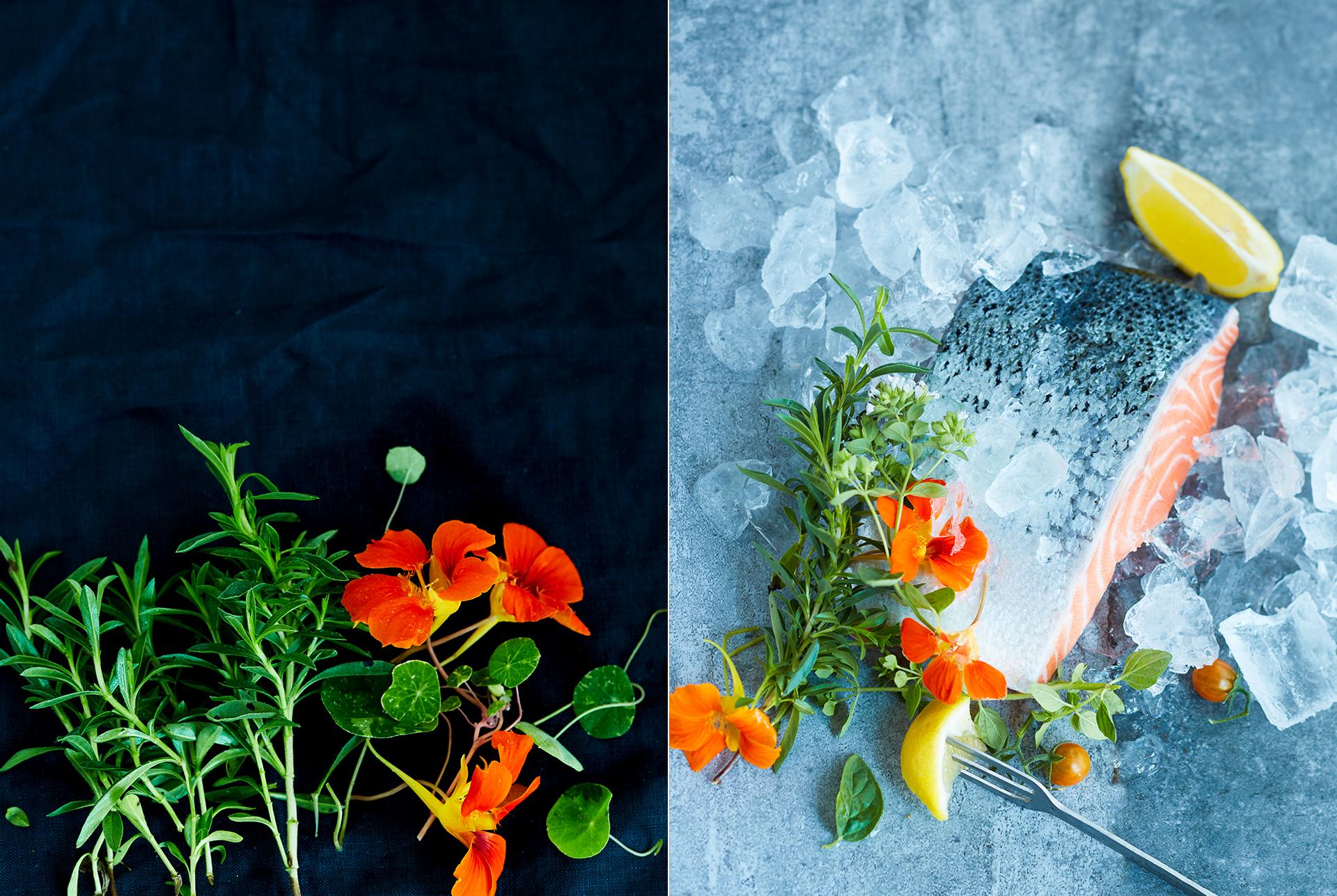 roher Lachs auf Eiswuerfel andekoriert mit frischen Kraeutern, Kapuzinerblueten und Minitomaten Foodstyling Muenchen